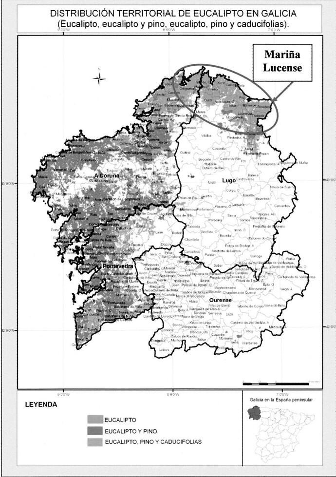 FIGURA-11-DISTRIBUCION-TERRITORIAL-DE-EUCALIPTO-EN-GALICIA-EUCALIPTO-EUCALIPTO-Y-PINO