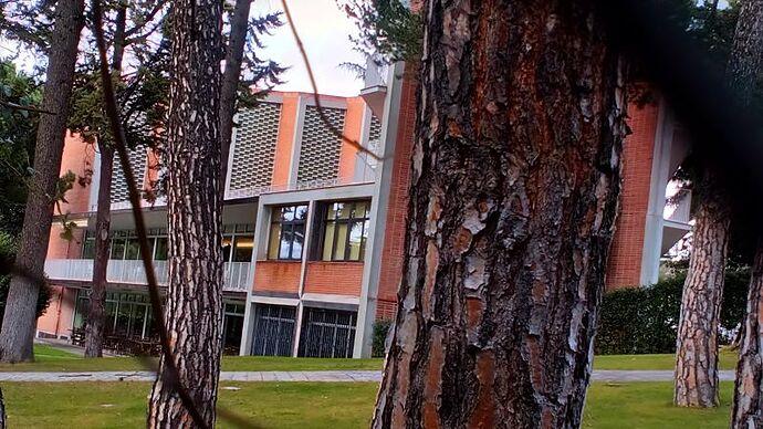 Colegio Mayor Aquinas (2)_opt