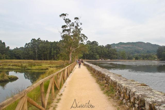 espacios naturales galicia -.vilaboa pontevedra -maisgrelos - alvientooo - terras de pontevedra - salinas de ulló